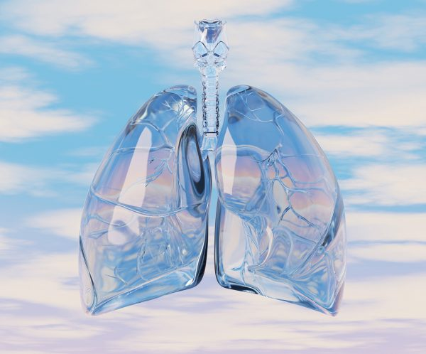 Digital illustration of Lungs , with sky background