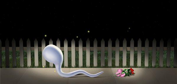 Sperm Fence Final