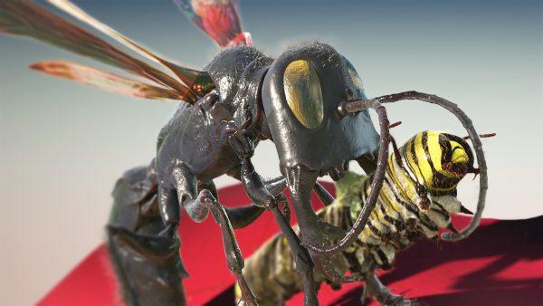 garuda wasp